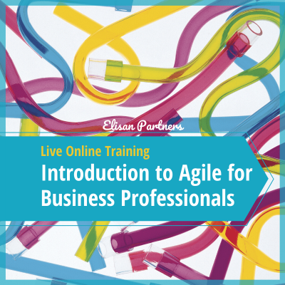 Introduction to Agile for Business Professionals